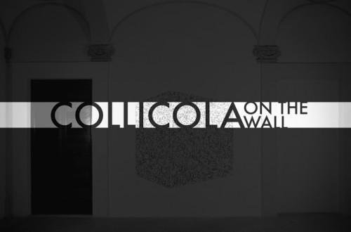 COLLICOLA-OTW